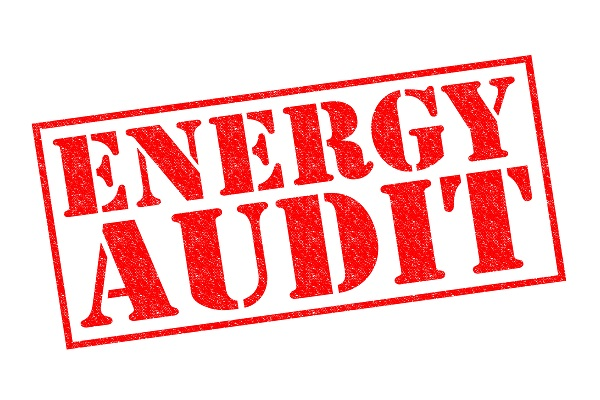 ENERGY AUDIT red Rubber Stamp over a white background
